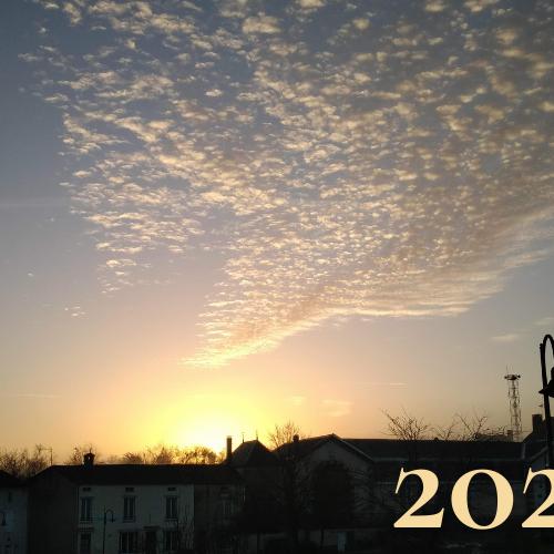 Yes! Celebrating 2020